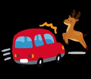 道路に飛び出してきた鹿と衝突寸前の赤い車